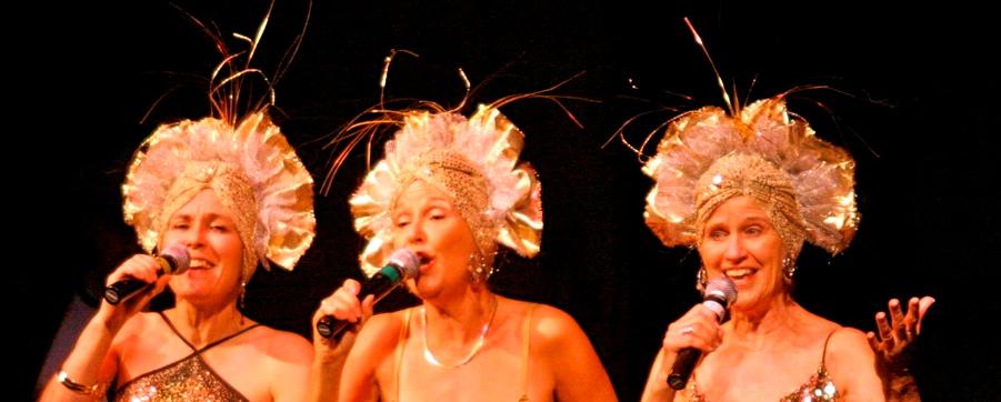 Lisa Lambert, Joani Bye & Jan Warren ~ Songs from the Attic